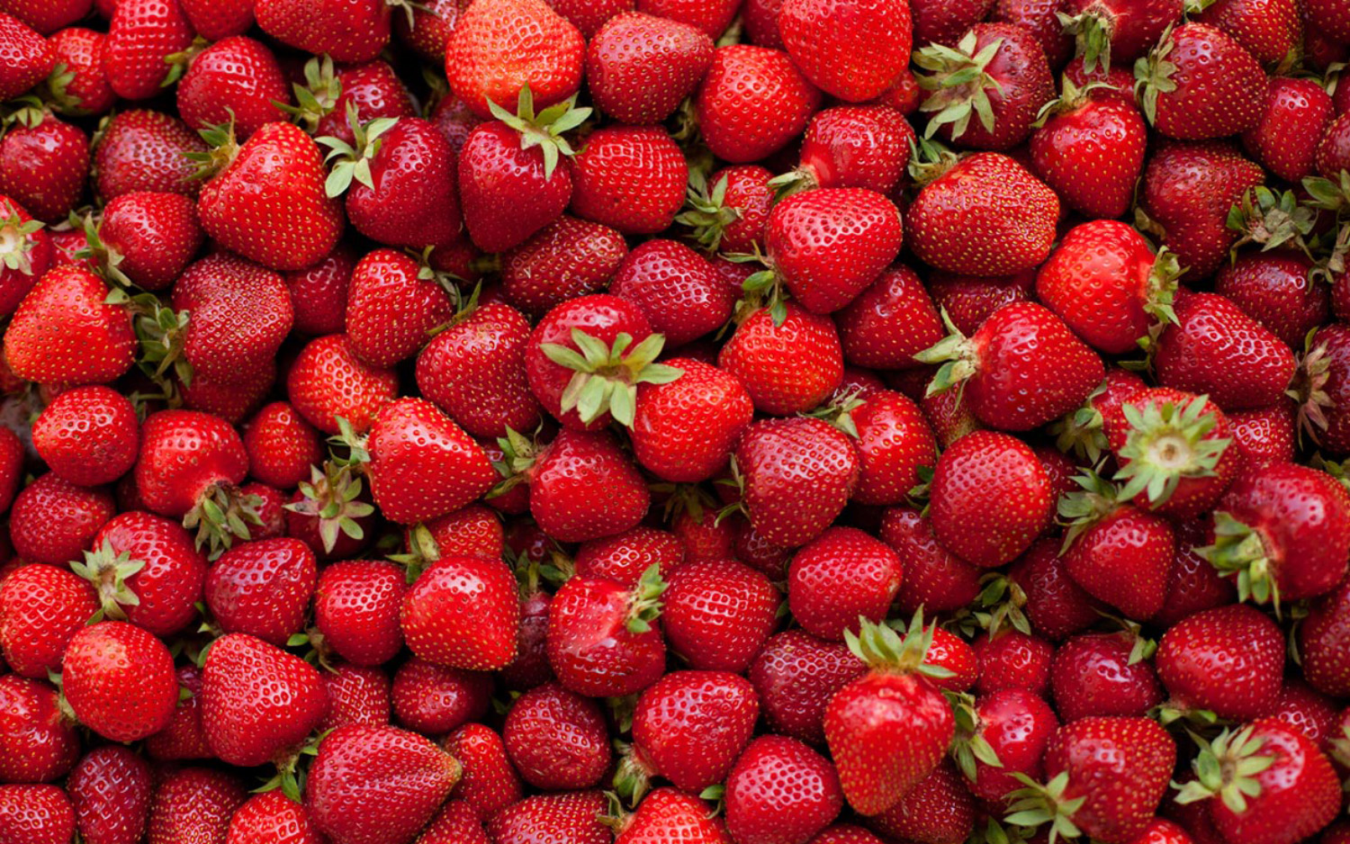 Aneberries Fresas