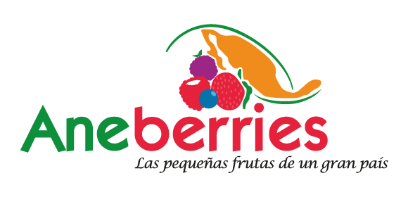 Aneberries